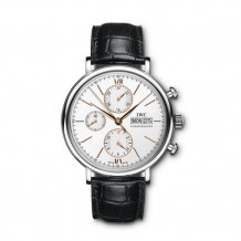 IWC Stainless Steel Portofino Men's Watch - IW391022