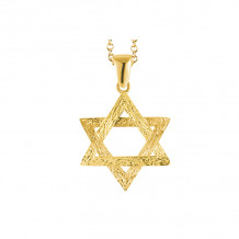 Shema 14k Yellow Gold Star Of David Necklace - IR2186Y