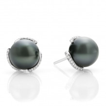 Mikimoto 18k White Gold Embrace Pearl Earrings - MEA10156BDXW
